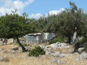 Goatherd's camp